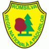 sponsor-fundatia-alex-tache-romsilva